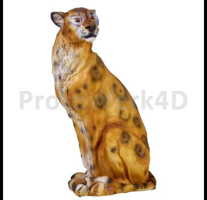 Gepard, NEU