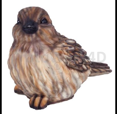 Big Sparrow